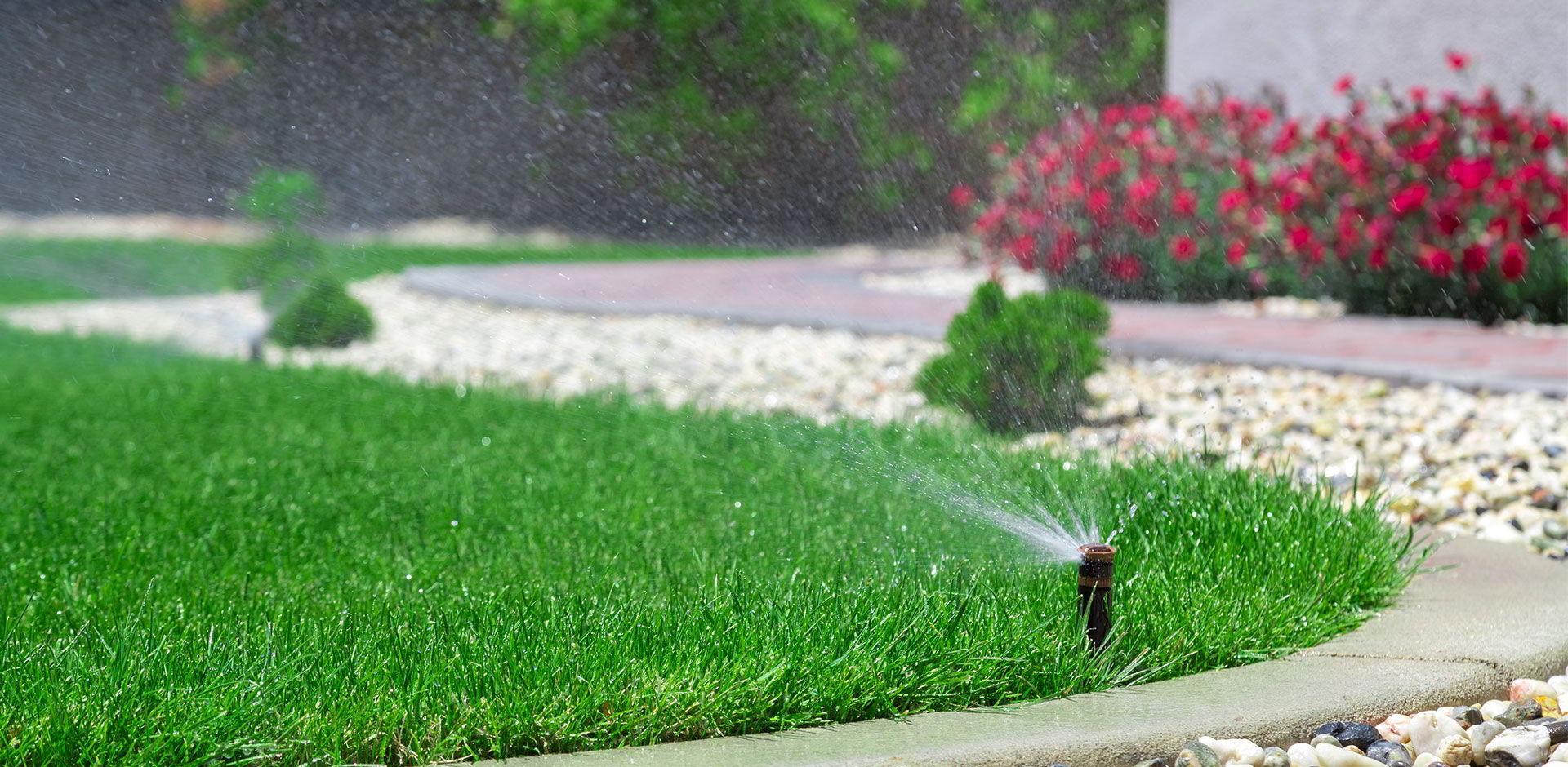 Arrosage automatique sur une belle pelouse